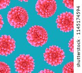 pink dahlia on blue background. ... | Shutterstock .eps vector #1145174594
