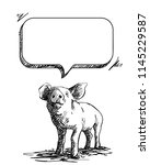 sketch of pig and speech bubble ... | Shutterstock .eps vector #1145229587
