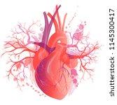 vector realistic human heart ... | Shutterstock .eps vector #1145300417