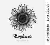 botanical floral illustration ... | Shutterstock .eps vector #1145321717