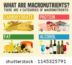 main food groups  ... | Shutterstock .eps vector #1145325791