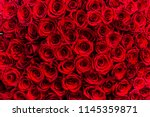 Stock photo fresh dark red roses close up texture background 1145359871
