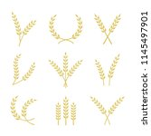 vector wheat icons with various ... | Shutterstock .eps vector #1145497901