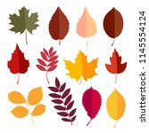 autumn elements collection | Shutterstock .eps vector #1145554124