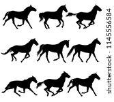 set animal silhouette of black...   Shutterstock . vector #1145556584