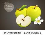 golden delicious apples whole... | Shutterstock .eps vector #1145605811