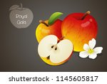 royal gala apples whole and cut ... | Shutterstock .eps vector #1145605817