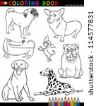 coloring book or page cartoon... | Shutterstock .eps vector #114577831