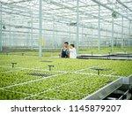 worker and scientist... | Shutterstock . vector #1145879207