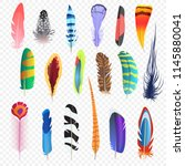 vector colored bird feathers... | Shutterstock .eps vector #1145880041