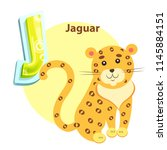 jaguar wild animal children... | Shutterstock .eps vector #1145884151