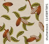 classic cacao plant background... | Shutterstock .eps vector #1145897891