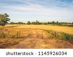 slant and rusty old gate in the ... | Shutterstock . vector #1145926034