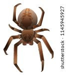 brown scary big shaggy spider... | Shutterstock .eps vector #1145945927