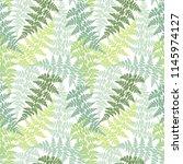 fern frond herbs  tropical... | Shutterstock .eps vector #1145974127