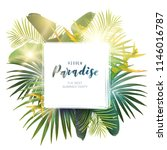 green summer tropical... | Shutterstock .eps vector #1146016787