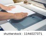 woman hands putting a sheet of... | Shutterstock . vector #1146027371