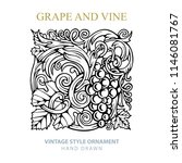 grape and vine. hand drawn... | Shutterstock .eps vector #1146081767