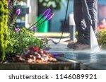 backyard garden cleaning time...   Shutterstock . vector #1146089921