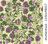 seamless pattern with field... | Shutterstock .eps vector #1146198017