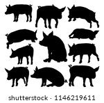 a pig silhouettes farm animal... | Shutterstock .eps vector #1146219611