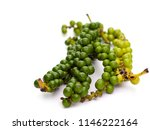 fresh pepper on white... | Shutterstock . vector #1146222164