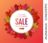 autumn promotion banner layout... | Shutterstock .eps vector #1146233591