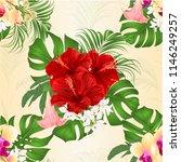 seamless texture bouquet with... | Shutterstock .eps vector #1146249257