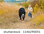 boy running around with big dog ... | Shutterstock . vector #1146290051
