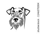 airedale terrier dog   bingley  ... | Shutterstock .eps vector #1146370304