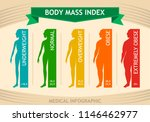 woman body mass index info... | Shutterstock .eps vector #1146462977