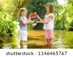 two little sisters playing with ...   Shutterstock . vector #1146465767