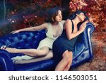 two glamour woman with sexy... | Shutterstock . vector #1146503051