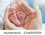Stock photo mother s hands holding newborn baby feet closeup feet of newborn baby healthcare and medical 1146503504