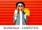 elegant happy autumn smiling... | Shutterstock . vector #1146517151