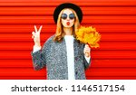 funny cool girl with red lips... | Shutterstock . vector #1146517154