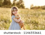 Stock photo little cute little girl with a red kitten on her hands best friends interaction of children with 1146553661