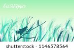 beetle grasshopper sits on a... | Shutterstock .eps vector #1146578564