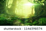 path through magical forest at... | Shutterstock . vector #1146598574
