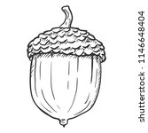 vector hand drawn sketch... | Shutterstock .eps vector #1146648404