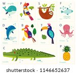 vector cards with alphabet... | Shutterstock .eps vector #1146652637