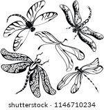 Stock vector set of black silhouettes dragonflies on white background vector illustration set of patterns of 1146710234