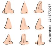 vector set of nose | Shutterstock .eps vector #1146773057
