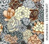 vector succulents seamless... | Shutterstock .eps vector #1146788147