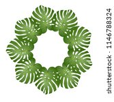 philodendron monstera leaf... | Shutterstock .eps vector #1146788324