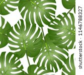 philodendron monstera leaf... | Shutterstock .eps vector #1146788327