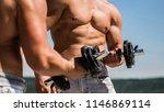 dumbbell. muscular bodybuilder... | Shutterstock . vector #1146869114
