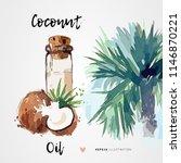 coconut oil for hair and skin...   Shutterstock .eps vector #1146870221