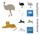 different animals cartoon black ...   Shutterstock . vector #1146903554