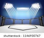 empty cage martial arts... | Shutterstock .eps vector #1146930767